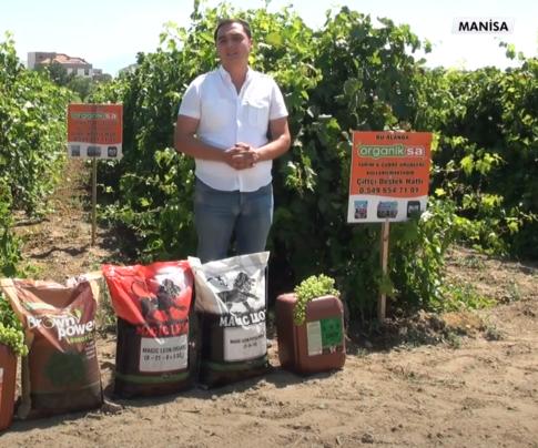 Manisa Üzüm Üreticileri Organiksa Ürünleri Hakkında Bilgi Veriyor